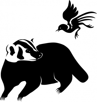 Badger & Magpie