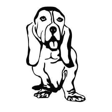Dog (Bassett)