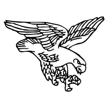 Bird (Eagle)