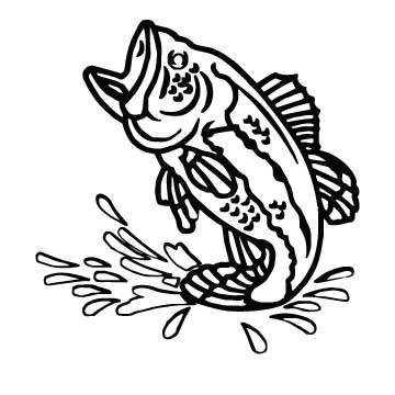 Fish Bigmouth Bass 1
