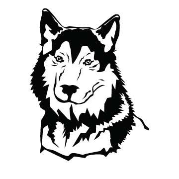 Dog (Huskie)
