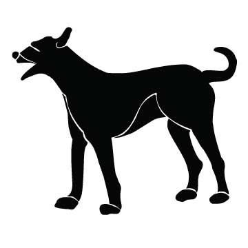 Dog (Man's Best Friend)