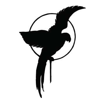 Bird (Parrot)