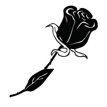 Rose (Elegant, solid)