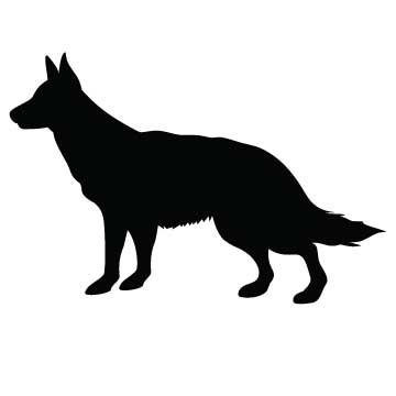 Dog (Shepherd)