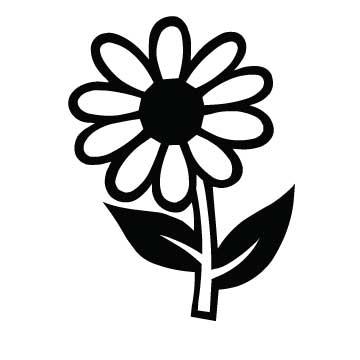 Flower (Daisy)