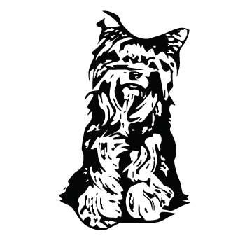 Dog (Yorkie)